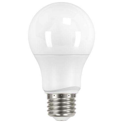 Light Bulbs & Accessories