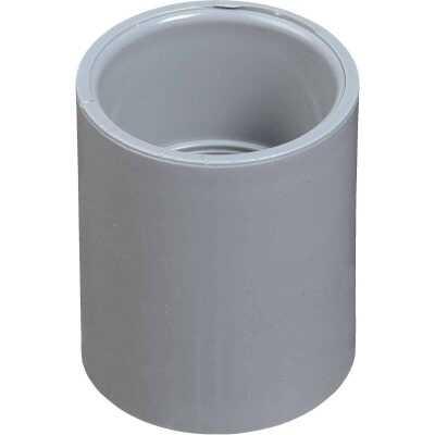 Carlon PVC 3/4 In. Socket Conduit Coupling