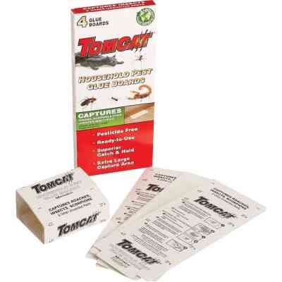 Tomcat Disposable Indoor Insect Trap (4-Pack)